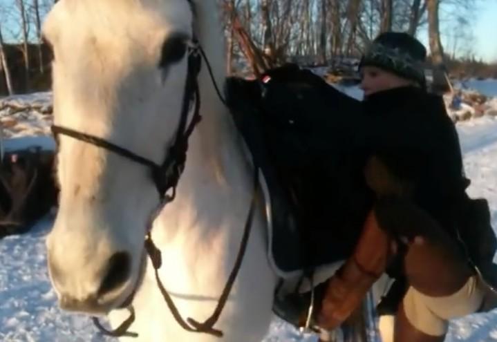 Klikkertrening fra hesteryggen