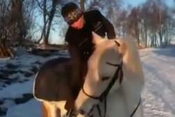 Mer klickerträning från hästryggen