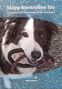 slapp-kontrollen-los-trygghet-och-sjalvkontroll-for-din-hund