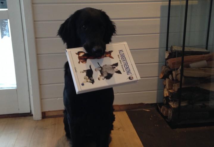 Nytt opplag av «Klikkertrening for din hund»