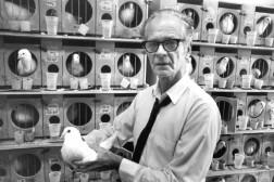 Historielektion med B.F. Skinner